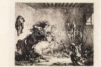 Käpfende Pferde in einem Stall