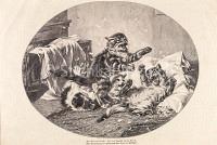 Natur Federnschlacht im Kissen