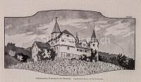 St Gallen Weinstein